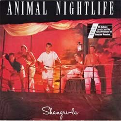 винил LP ANIMAL NIGHTLIFE ''Shangri-La'' (1985 German press, insert, 207 109-620, ex-/ex)