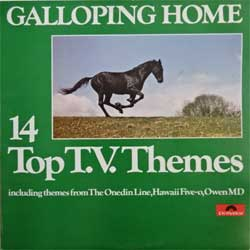 винил LP va GALLOPING HOME: 14 Top T.V.Themes (UK press, 2482-240 STANDARD, ex-/ex)