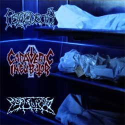 CADAVERIC INCUBATOR/FETAL DECAY/MORTALIZED ''Cadaveric Incubator/Fetal Decay/Mortalized'' (2005 Russian press, sfc05-001, mint/mint) (CD)